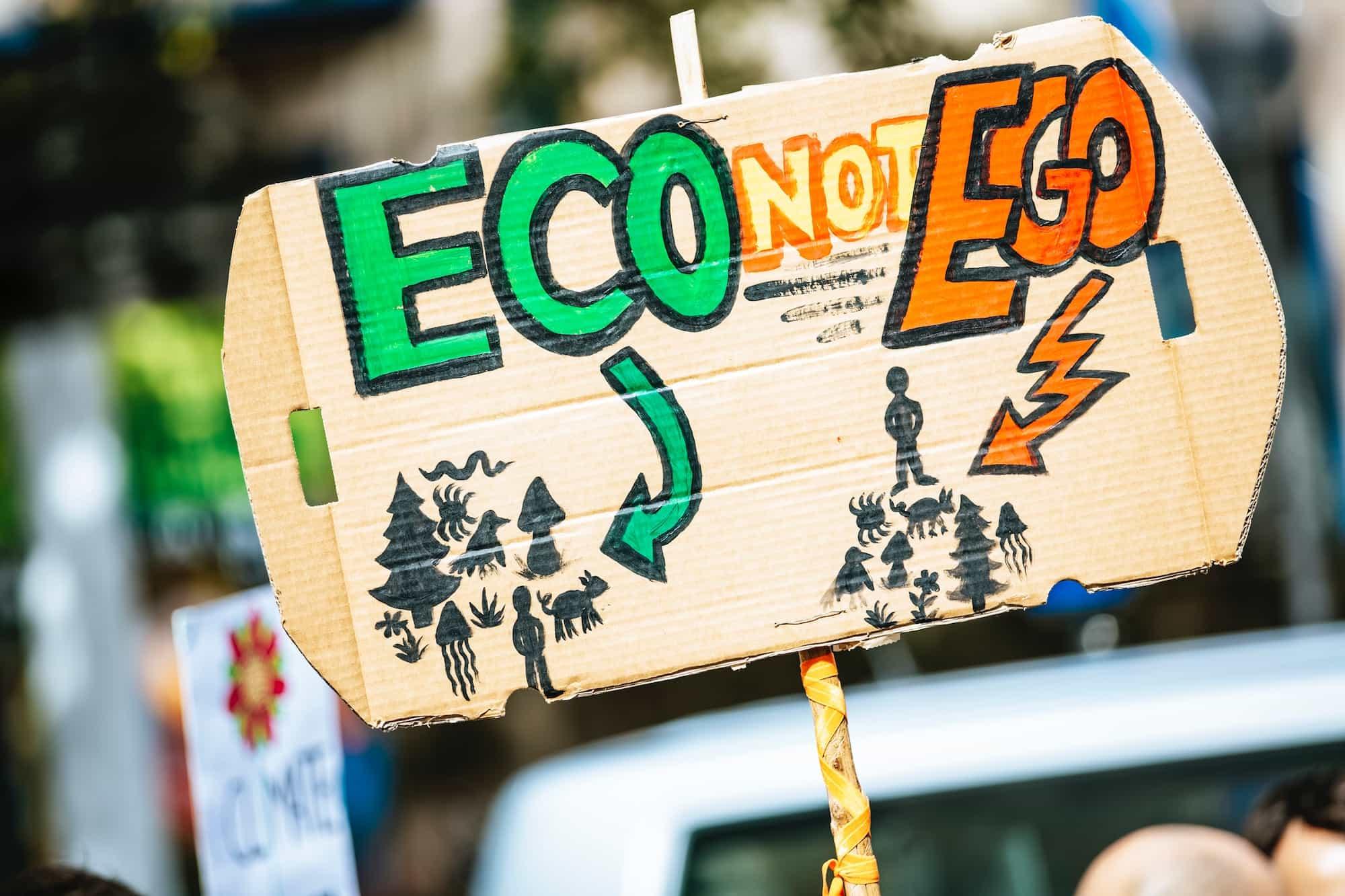 Flightnook-Eco vs Ego