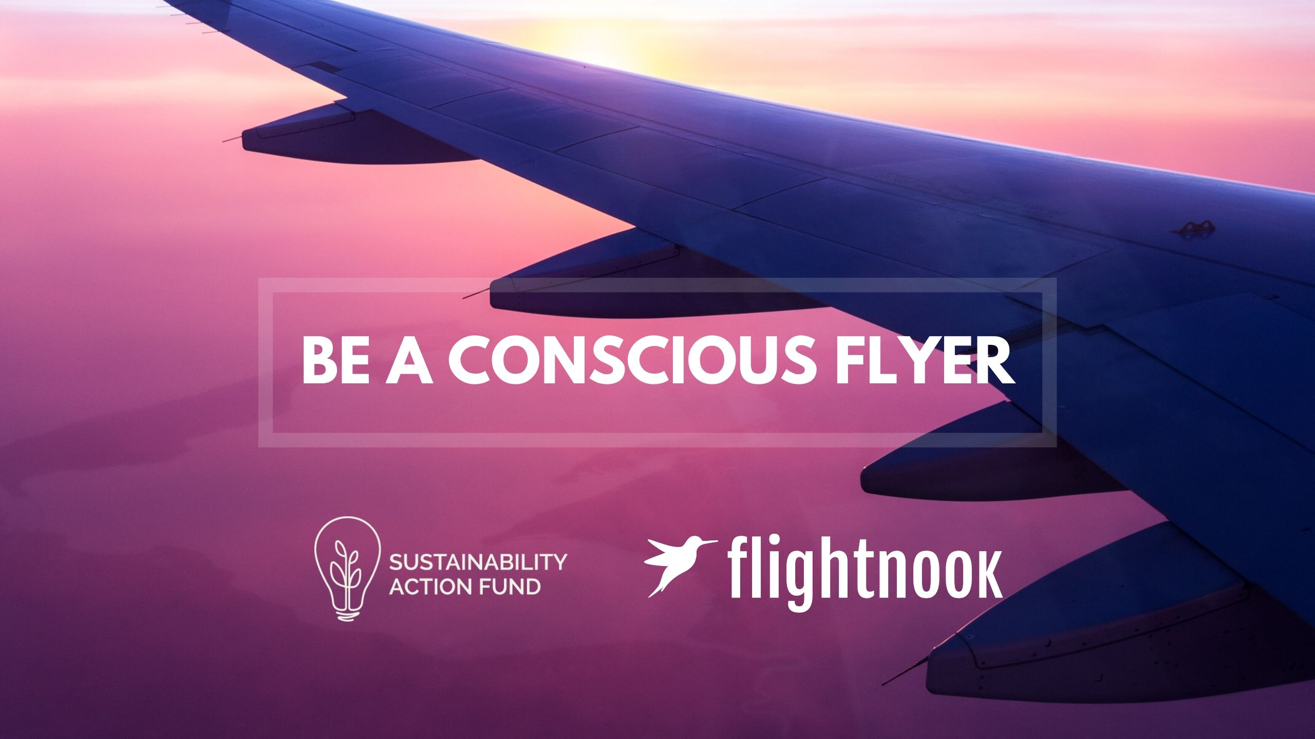 SAF-Article-Flightnook-Concordia